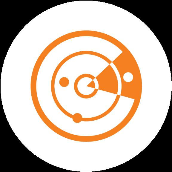 Detect-Icon